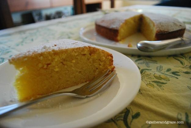 Orange Cake Gather and Graze