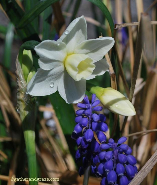 Spring3