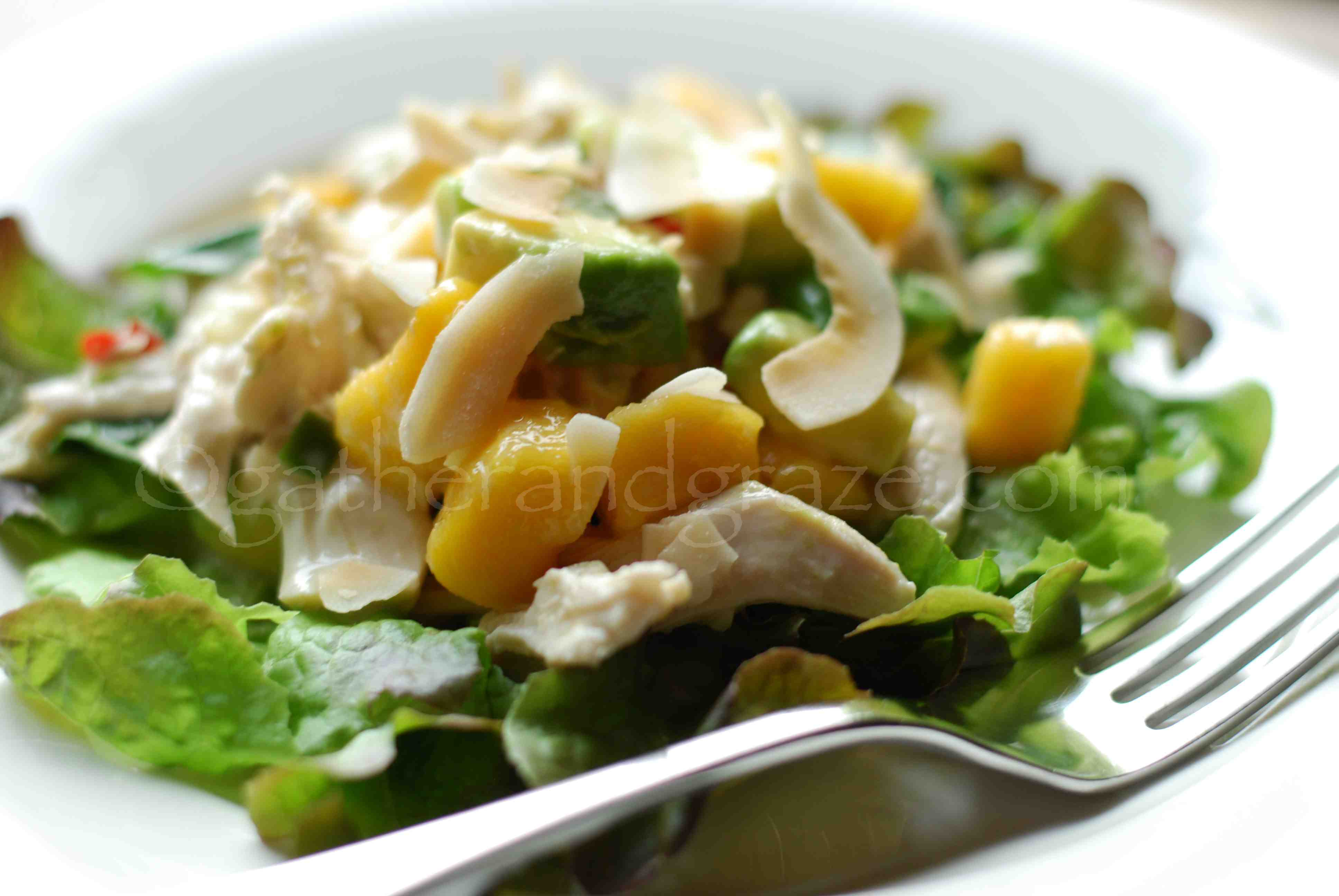 Coconut Poached Chicken with Mango and Avocado Salad   Gather and Graze
