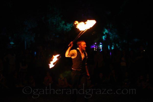 Enlighten 2014, Canberra, Australia, Gather and Graze