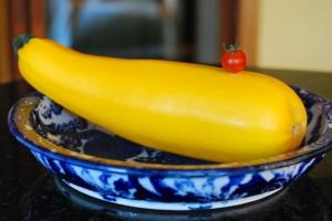 Zucchini | Gather and Graze