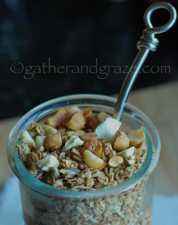 Toasted Muesli / Granola | Gather and Graze