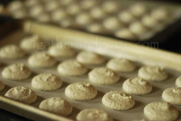 Sarah Bernhardt Cookies | Gather and Graze