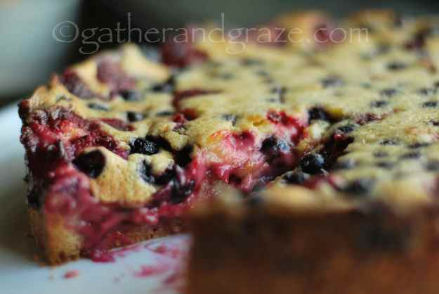 Berry Custard Cake | Gather and Graze