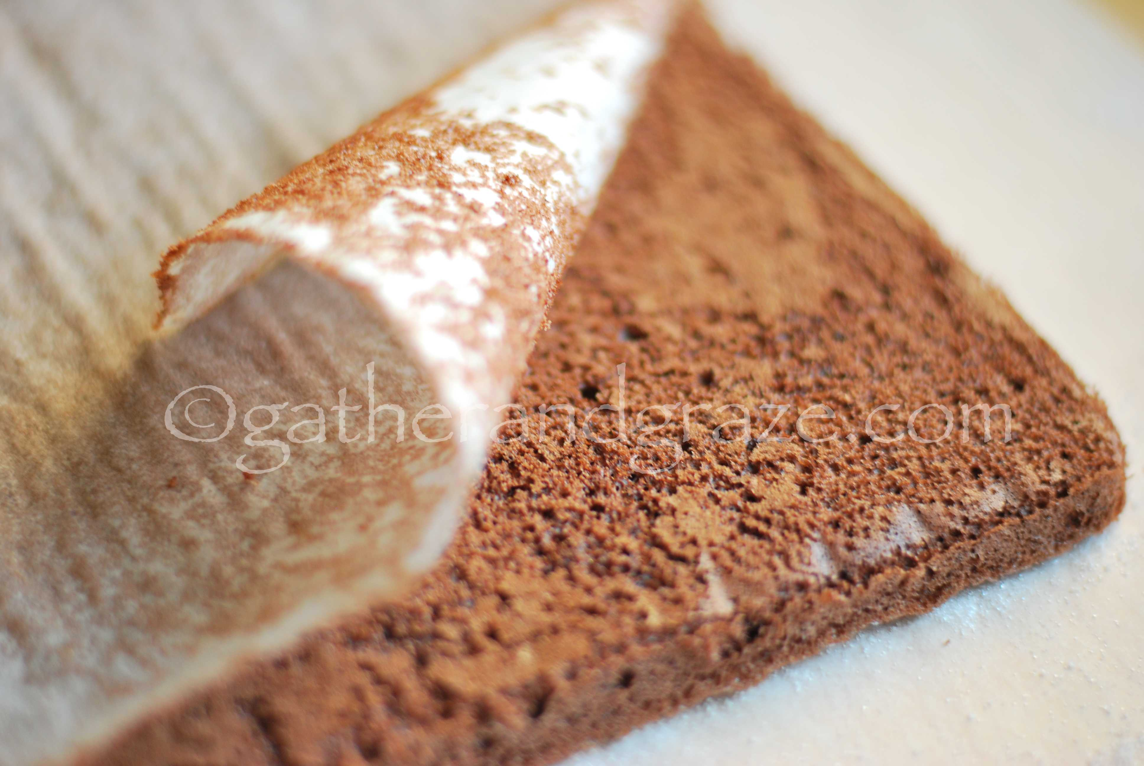 Chocolate Swiss Roll with Nutella Cream | Gather and Graze