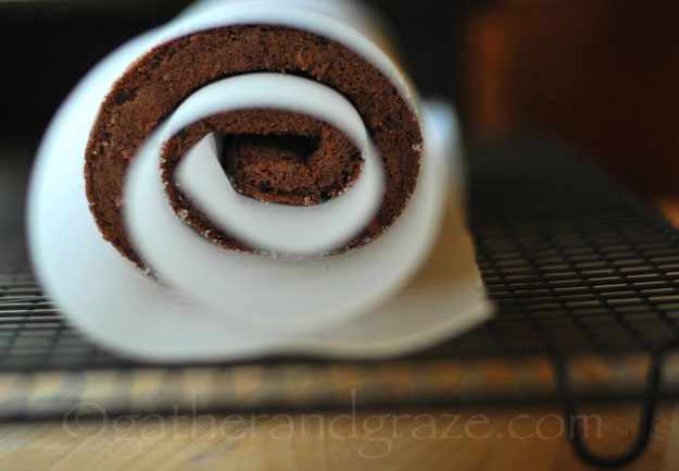 Chocolate Swiss Roll with Nutella Cream | Recipe | Gather and Graze