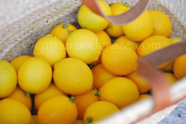 Four Recipes with Meyer Lemons | Gather and Graze