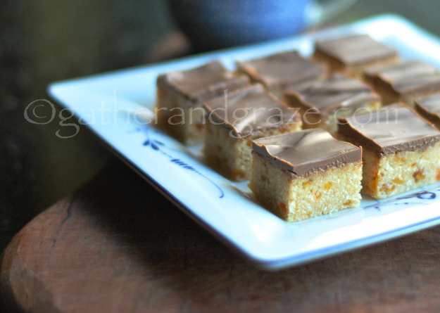 Apricot Coconut Slice | Gather and Graze