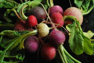Radishes for Smoked Salmon Salad | Gather and Graze