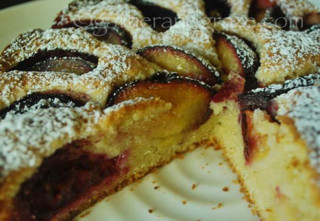 Plum & Cinnamon Cake | Gather and Graze