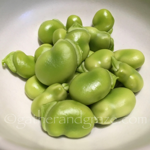 Broad Bean Salad | Gather and Graze