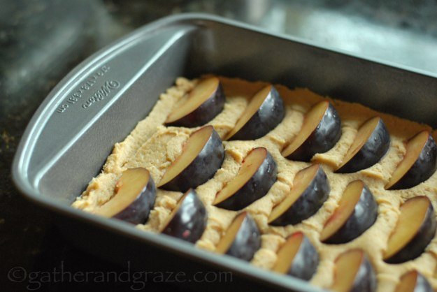 Seasonal Fruit Tray Bake | Gather and Graze