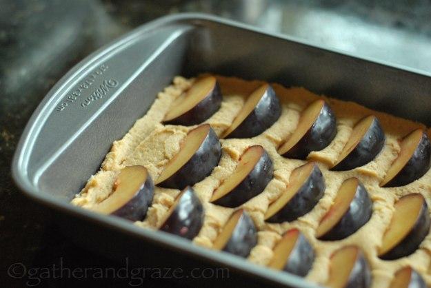 Seasonal Fruit Tray Bake   Gather and Graze
