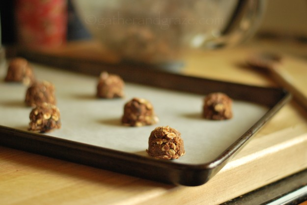 Chocolate Ginger Oat Cookies | Gather and Graze
